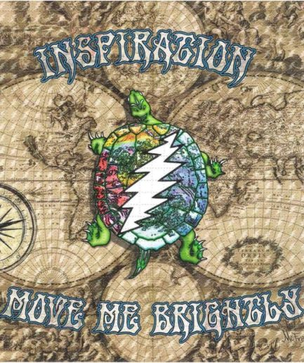 Inspiration Turtle Blotter Art